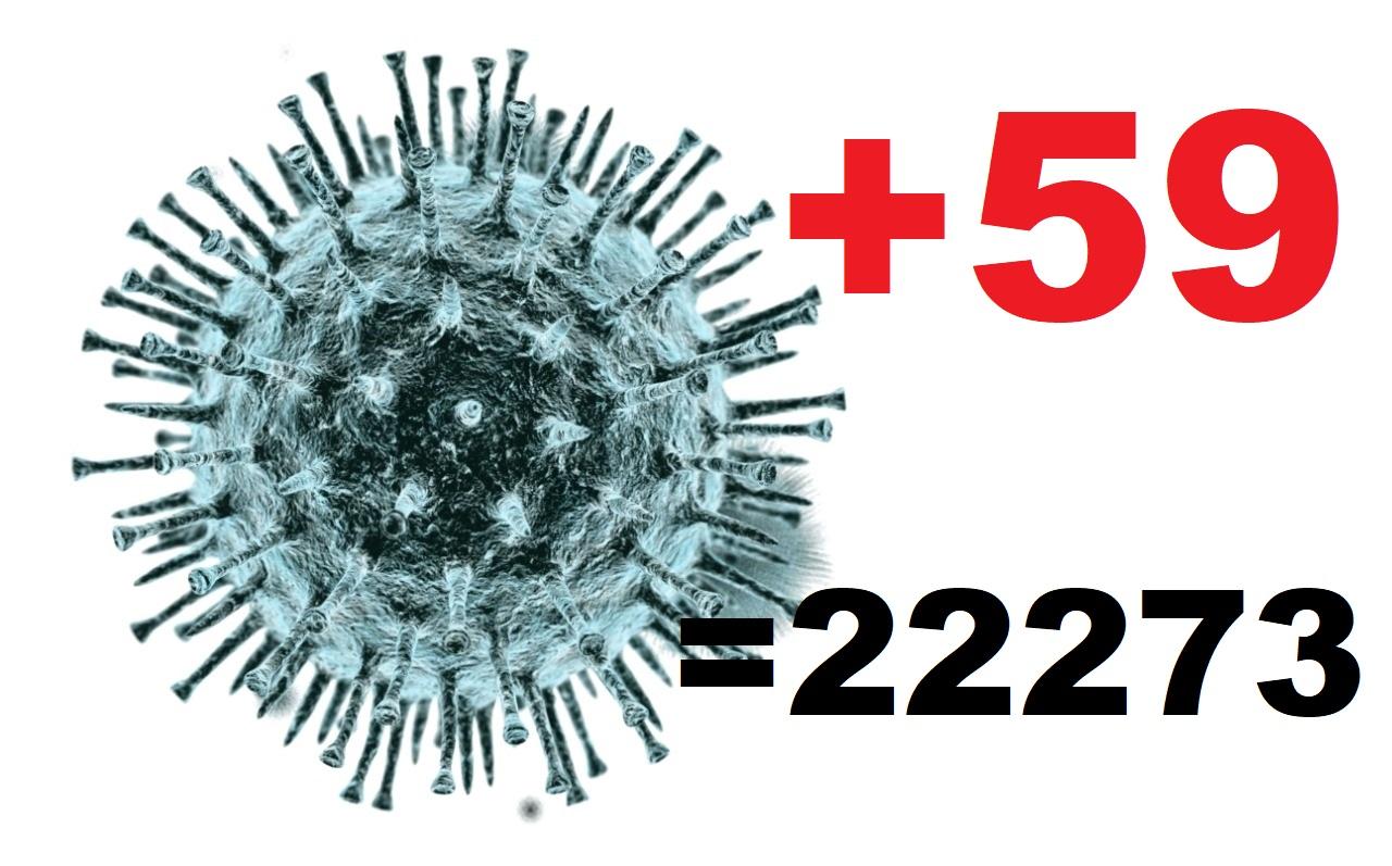 За cутки коронавирус подтвердился у 59 жителей Костромской области