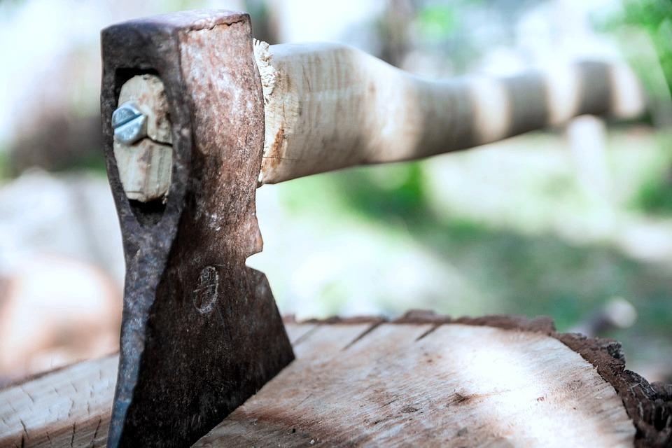 Дровосека из Нерехты сгубило желание сэкономить на сарае