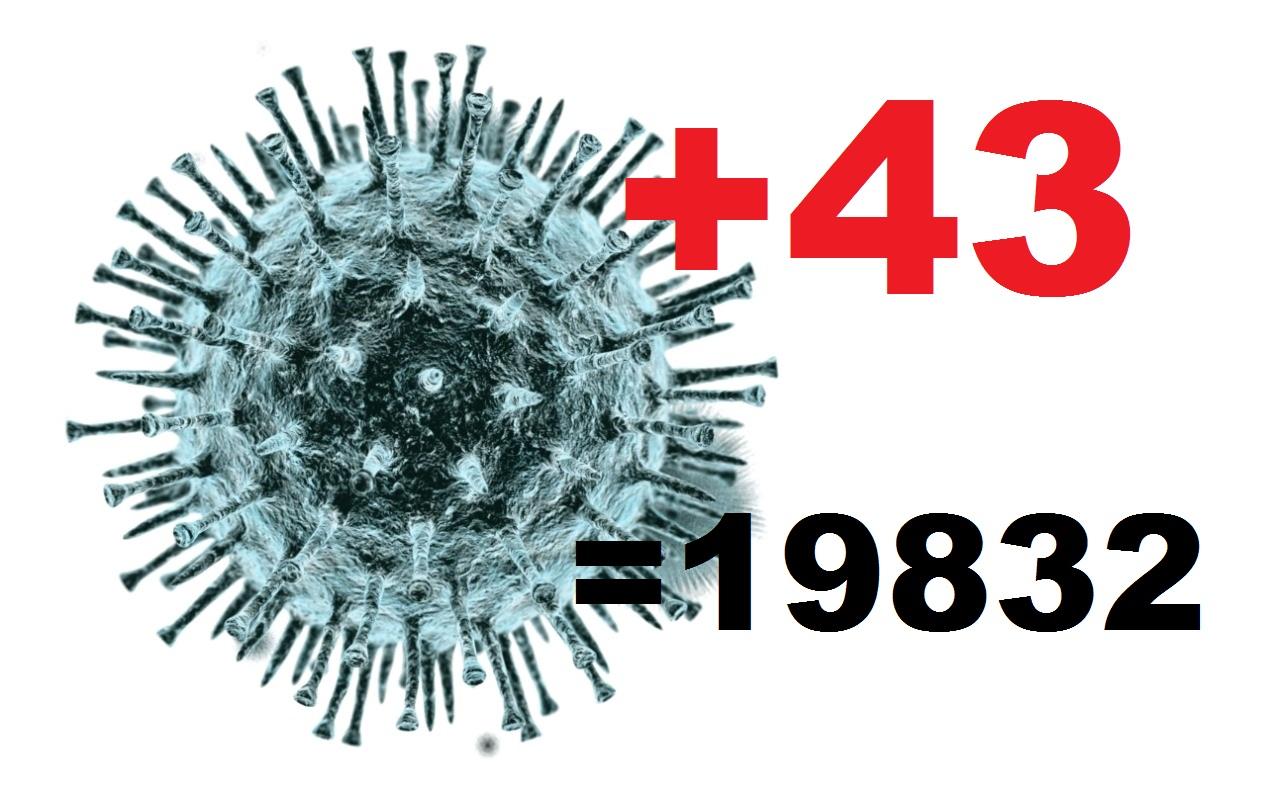 43 человека заболели коронавирусом за сутки в Костромское области