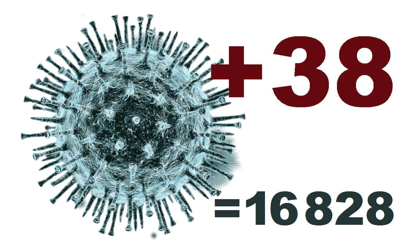 В Костромской области за сутки выявлено 38 новых случаев коронавируса