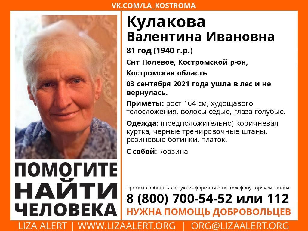 В Костромском районе разыскивают пожилую женщину с корзиной
