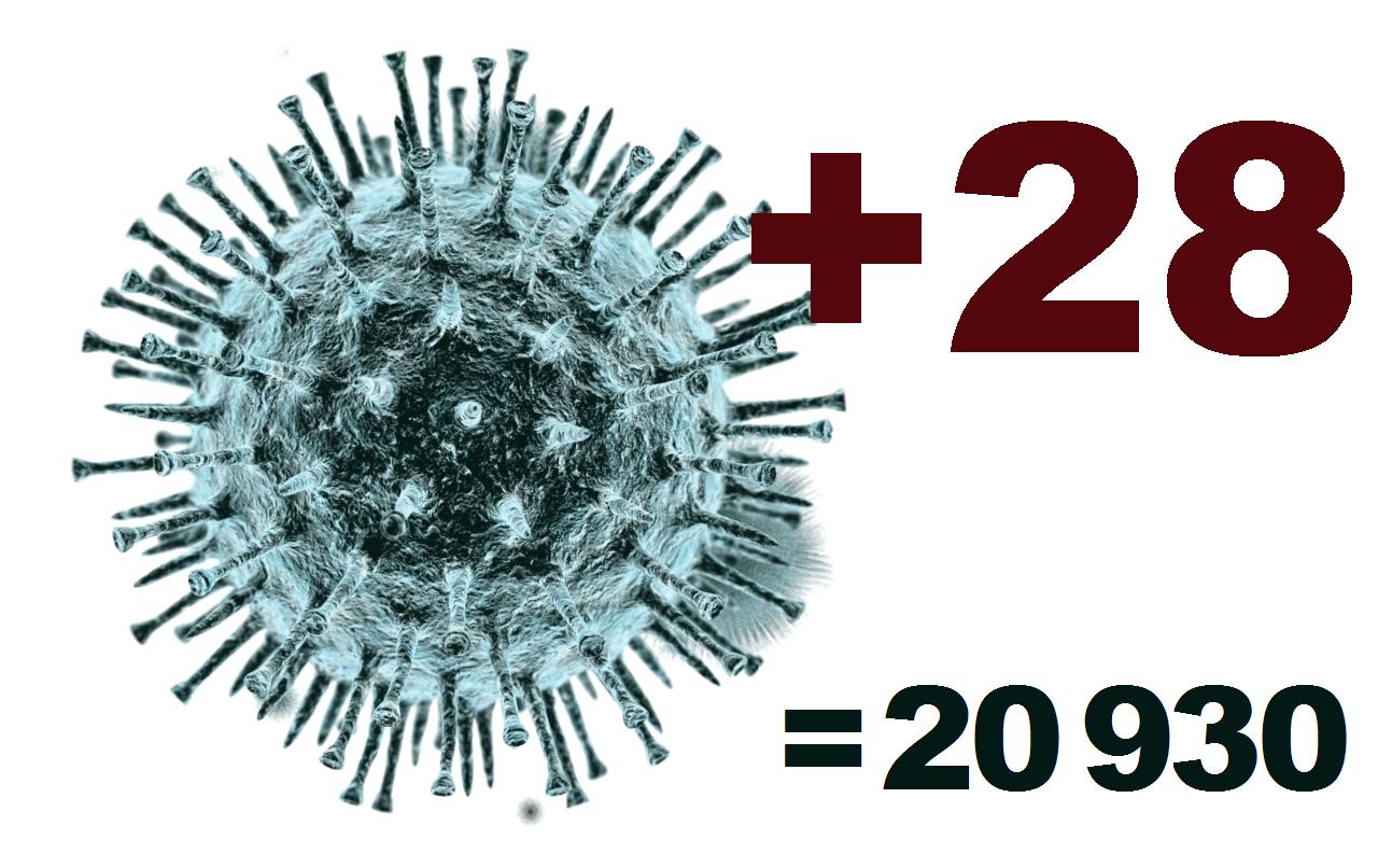За сутки в Костромской области выявлено 28 заболевших коронавирусом