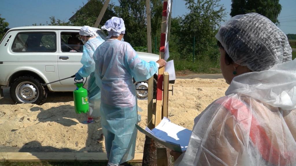 Девять свиней уничтожили для профилактики в костромском селе