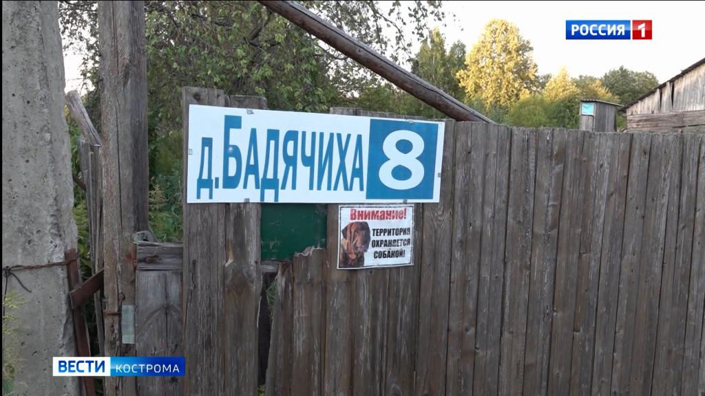 Более двухсот человек тушат пять лесных пожаров в Костромской области