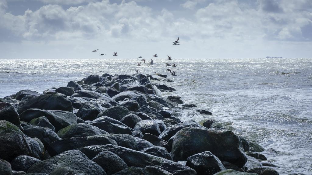 north-sea-2364125_1280.jpg