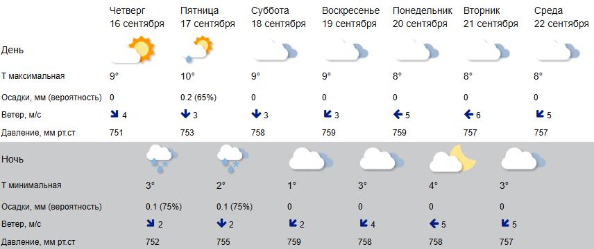 Дождливый циклон на время перестанет мочить Кострому