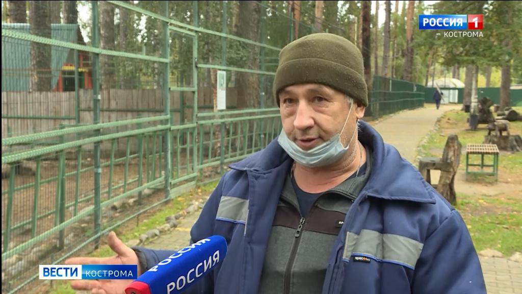 Зоопарк в Костроме открылся после ремонта