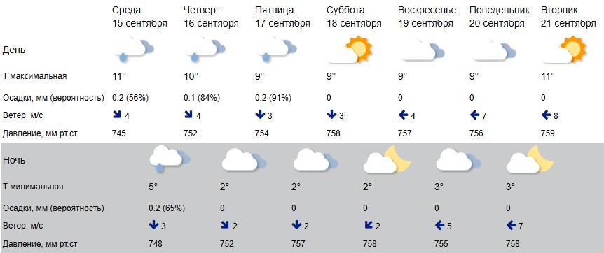 Осень в Костроме останется стабильно зябкой
