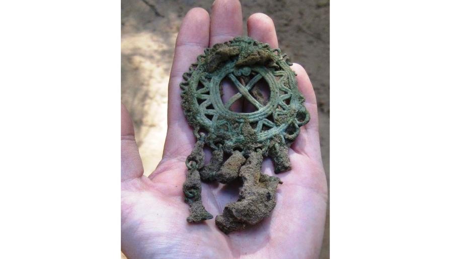 Юные костромские лесничие остались в восторге от найденных сокровищ