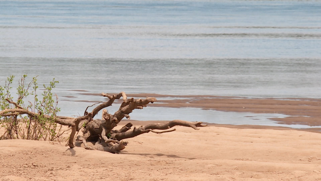 Костромские реки обмелели на треть