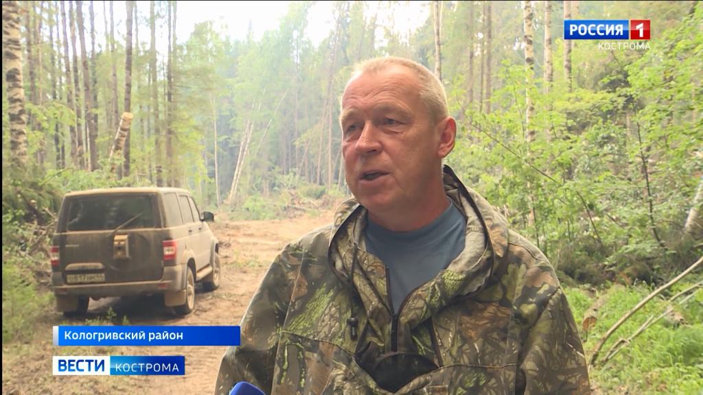 Крупнейший лесной пожар в Костромской области раскинулся на 350 гектаров