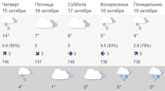 К выходным в Костромской области может выпасть снег