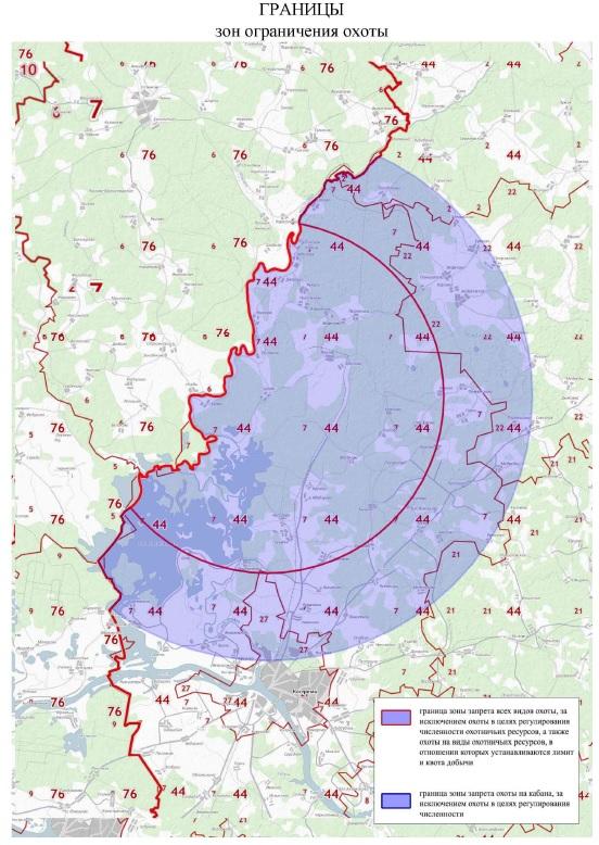 Из-за африканской чумы свиней в Костромской области введены ограничения охоты