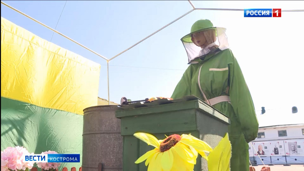 Большая ярмарка мёда заработала в центре Костромы