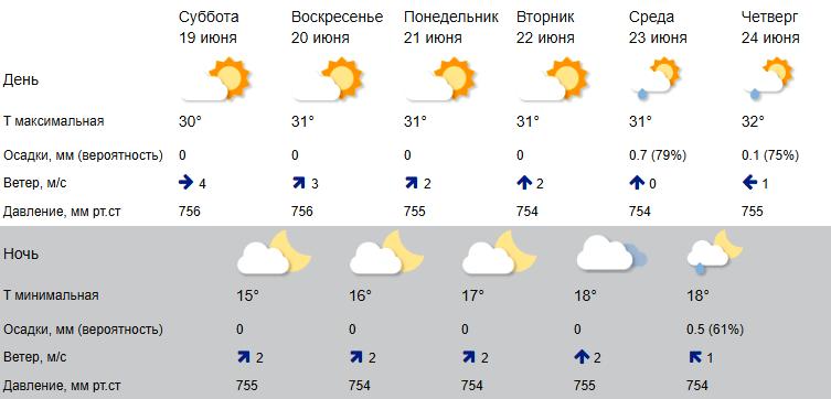Знойный июнь в Костроме готовится бить рекорды